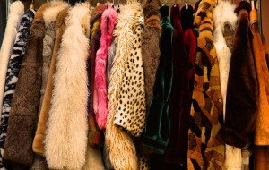 the-epic-fur-collection
