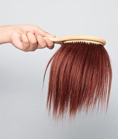 hair hairbrush